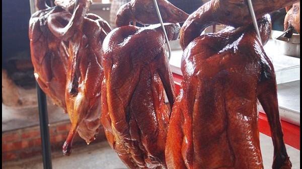 台中沙鹿-東北甕缸雞