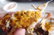 [食記]苗栗南庄-在地大閘蟹。蟹膏滿滿、現抓現吃